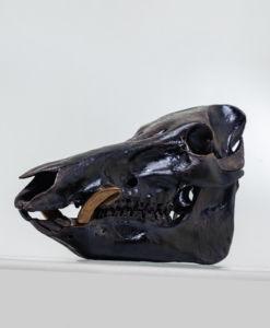 猪骨のオブジェ